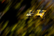 October 1, 2016: IMSA Petit Le Mans, #3 Mike Rockenfeller, Antonio Garcia, Jan Magnussen, Corvette Racing, Corvette C7 GTLM