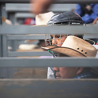 Jonah Jones, 10, and his father Kevin Jones watch his competition from inside his chute as he waits for his turn in the steer riding competition Wednesday, June 12 at Red Rock Park during the Gallup Lions Club youth rodeo.