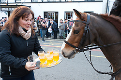 © Licensed to London News Pictures. 01/01/2019. Carmarthen, Carmarthenshire, Wales, UK. A horse eyes up the 'Secret recipe' punch which is offered to riders. The Hunt arrive in the cente of town. Anti-Bloodsport activists gather in the Welsh town of Carmarthen to voice their anger at the continued illegal hunting with dogs - hunting with dogs was made illegal in 2004 by The Hunting Act 2004 (c37). The Anti-Hunt protest takes place on the day that the Carmarthenshire Hunt have chosen to parade through the town to collect money and support for their blood-sports. Photo credit: Graham M. Lawrence/LNP