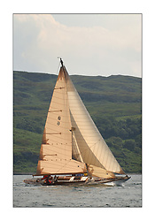 Mikado beating upwind in the West Kyle on the last days racing...This the largest gathering of classic yachts designed by William Fife returned to their birth place on the Clyde to participate in the 2nd Fife Regatta. 22 Yachts from around the world participated in the event which honoured the skills of Yacht Designer Wm Fife, and his yard in Fairlie, Scotland...FAO Picture Desk..Marc Turner / PFM Pictures