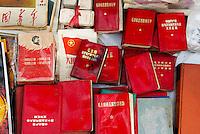 Chine. Province du Guizhou. Guiyang. Renmin square. Livre et photo de Mao. // China. Guizhou province. Guiyang (capital city of the province). Renmin square. Book and pictures of Mao.