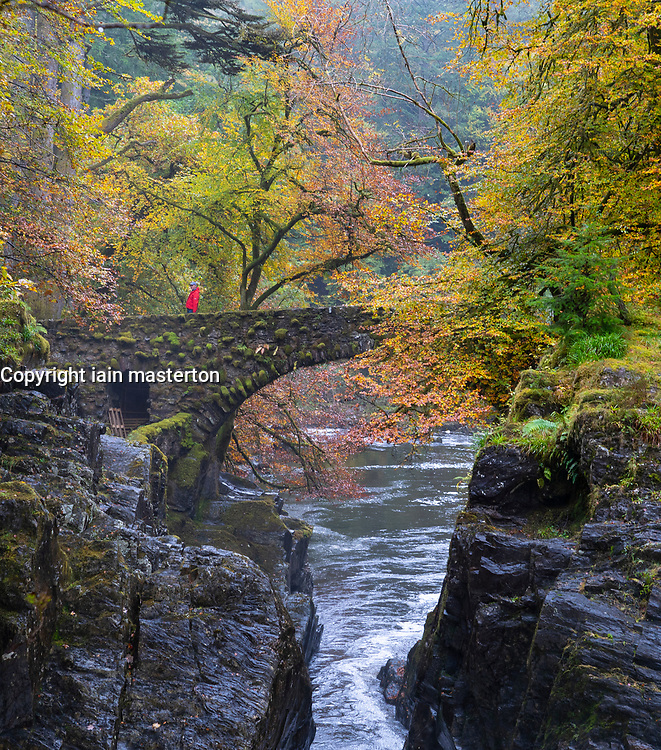 Autumn colours on trees and River Braan in spate at The Hermitage near Dunkeld in Perth and Kinross. The site is a National Trust for Scotland protected site and a popular destination for the public to enjoy woodland walks in autumn