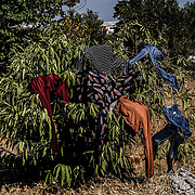 MYTILENE, GREECE - SEPTEMBER 12: Washed clothes are hung to dry on a bush located on the side of the road as migrants have taken to live on the sides of a highway days after Moria migrant camp fires, which started Tuesday night, and ended up burning most of the encampment on September 12, 2020 in Mytilene, Greece. According to UNHCR, current numbers say the asylum-seekers displaced from the encampment are around 12,000. (Photo by Byron Smith for CNN)