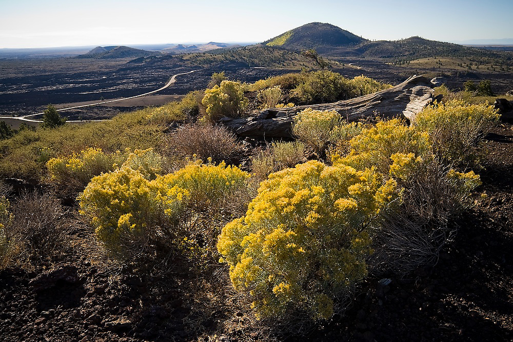 Sagebrush covers hills of black pumice left by lava flows thousands of years ago at Craters of the Moon National Monument, Idaho.