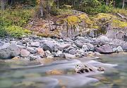 Ohanapecoosh River #4