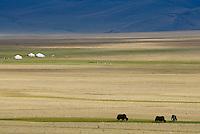 Mongolie. Province de Khovd. Campement de yourte. // Mongolia. Khovd province. Yurt camp.