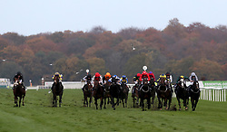 Edgewood ridden by P J McDonald (red and white cap) wins the Download The Marathonbet App Cock O'The North EBF Maiden Stakes race during Marathonbet November Handicap Day at Doncaster Racecourse.
