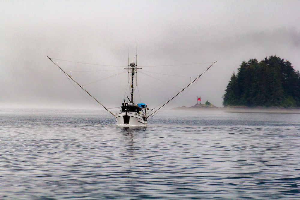 Passing a Southeast Alaska trollers in the fog.  There are many older wooden boats still commercially trolling for salmon.  Some of the best handled and cared for fish you can buy.