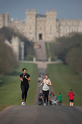 © Licensed to London News Pictures. 17/03/2016. Windsor, UK. People enjoy the spring sunshine on The Long Walk in sight of Windsor Castle. Photo credit: Peter Macdiarmid/LNP