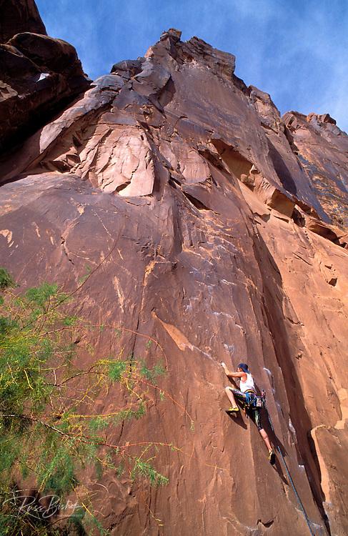 Rock climbing on Wall Street, Colorado River Gorge, Moab, Utah USA