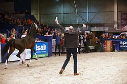 629 - Hermanus<br /> KWPN Henstenkeuring 's Hertogenbosch 2015<br /> © Dirk Caremans