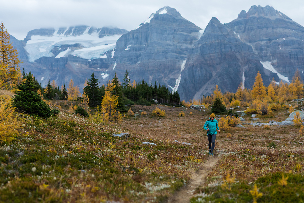 Sherri Castiglione trail running among larches on Larch Valley trail in Valley of the Ten Peaks, Banff National Park
