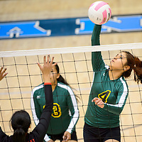 111413  Adron Gardner/Independent<br /> <br /> Newcomb Skyhawk Stephanie Watchman (4) spikes to the Hatch Valley Bears during the state volleyball tournament at Cleveland High School in Rio Rancho Thursday.