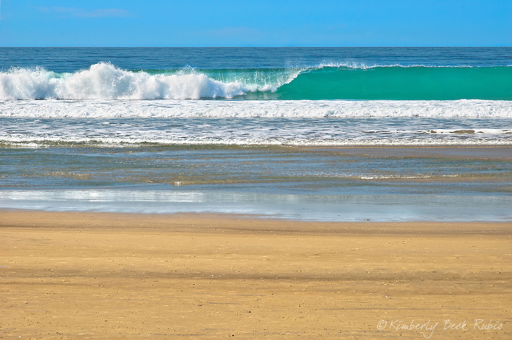 Turquoise breaking wave off the coast of La Jolla, California, at La Jolla Shores Beach.