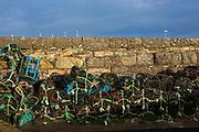 Lobster pots in Kilmore Quay, Wexford, Ireland.