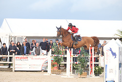 Thonon Virginie, BEL, Scento Du Piedroux Z<br /> 6 years old Horses<br /> BK Young Horses Gesves 2021<br /> © Hippo Foto - Julien Counet