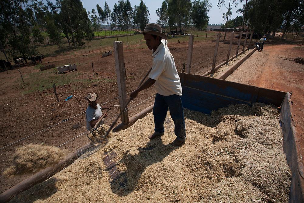 Bambui _ MG, 09 Outubro de 2007<br /> <br /> Imagens rurais e urbanas do Municipio de Bambui em Minas Gerais.<br /> <br /> FOTO: JOAO MARCOS ROSA / AGENCIA NITRO