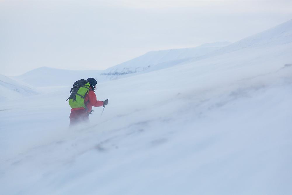 Michelle Blade skis up against the wind in Foxdalen, Svalbard.