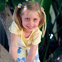 Young girl with ponytails climbing a tree on a sunny day.