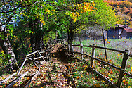 Path between an old wooden fence