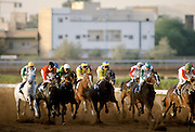 Horseracing on sandy racetrack in Riyadh, Saudi Arabia