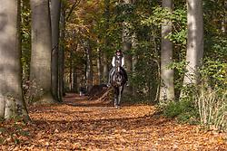 De Keersmaecker Jolien, BEL, Morumbi CD<br /> Liezele 2020<br /> © Hippo Foto - Dirk Caremans<br /> 08/11/2020