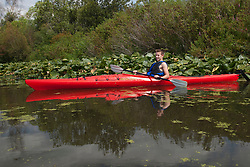 North America, United States, Washington, Bellevue, teenage boy kayaking in Mercer Slough Nature Park MR