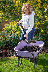 Covering bare soil in a border with a mulch of garden compost