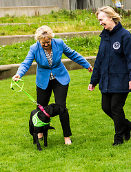 Pictured: Roseanna Cunningham, Holly (black labrador aged four) and Dee McIntosh, Comminucations Director for Battersea Dogs and Cat Home<br /> Cabinet secretary for Environment, Climate Change and Land Reform, Roseanna Cunningham, MSP, joined Dee McIntosh, Comminucations Director for Battersea Dogs and Cat Home and representatives from animal welfare charities outside the Scottish Parliament as they backed a campaign calling for an increase to the maximum prison sentence for animal cruelty from 12 months to five years. <br /> <br /> <br /> Ger Harley | EEm 20 September 2017