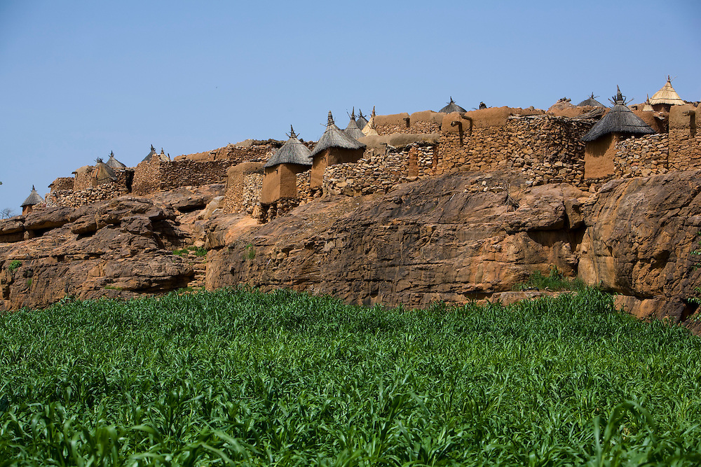 Panorama of Indelou village build on the top of a rocky outcrop with a millet field on the foreground. The Dogon Country is the most visited part of Mali with tourists visiting its tipical  villages that can be located on the cliff, on the sandy plain or in the rocky plateau