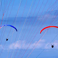 USA, California, San Diego. Paraglider strings and gliders at Torrey Pines.