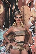 Rio de Janeiro, Brazil - March 5, 2019: Prix, pictured during Carnival in the Santa Teresa area of Rio de Janeiro, Brazil.