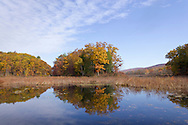 Mamakating, New York - Autumn scenes at the Bashakill Wildlife Management Area on Oct. 20, 2012.