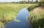 Drainage ditch in marshland at Hollesley, Suffolk, England
