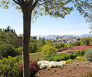 Generalife palace gardens, Alhambra, Granada, Spain
