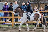 Ebony Horse Club, Brixton, Royal visit