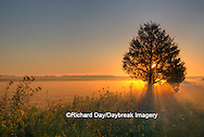 63893-02903 Sunrise at Prairie Ridge State Natural Area, Marion Co, IL