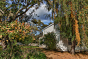 USA, Oregon, William L. Finley National Wildlife Refuge, the Fiechter House . Digital Composite HDR