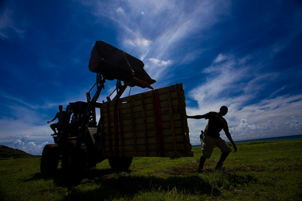 Construction Workers with Bulldozer in an Open Field, Fiji