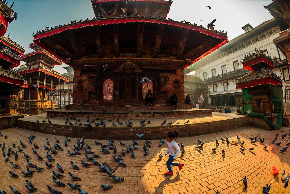 Pigeons, Durbar Square, Kathmandu, Nepal.