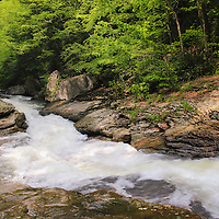 """""""Runneth Over""""<br /> <br /> Beautiful rapidly flowing water of Meadow Run in Ohiopyle State Park."""