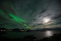 Small Northern Lights in moonlit night landscape, Stamsund, Vestvågøya, Lofoten Islands, Norway