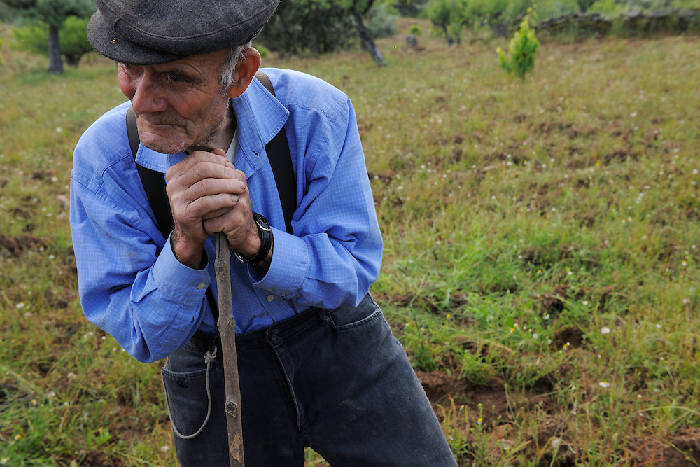 José Maria Felíx, 89 years old, ploughing with his donkey,<br /> Faia Brava and  Côa valley Archaeological park,<br /> Portugal