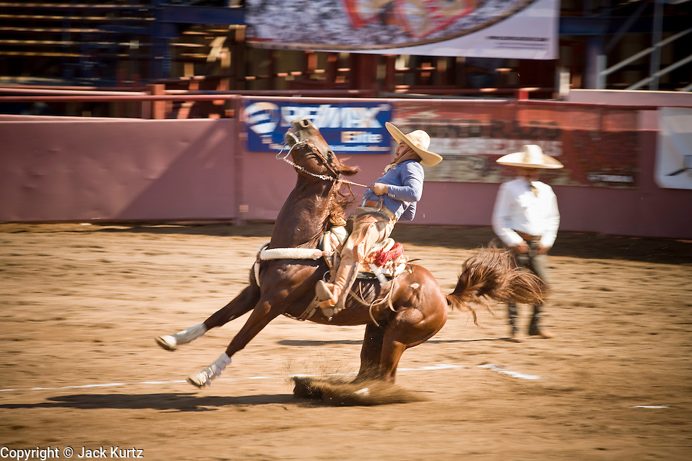 31 AUGUST 2007 -- PHOENIX, AZ: A competitor participates in the cala de caballo, which tests the rider's control of the horse. In this event, the charro, a Mexican cowboy, puts his horse through various commands - controlled slide; left and right half, full, and triple turns; dismount and mount; and reverse walk at the Congreso y Campeonato Nacional Charro in Phoenix, AZ, Friday, August 31. The event is the US championship for the Mexican Federacion Mexicana de Charreria. The winners of the US championship go on to compete in the Mexican Charreada championships in Morelia, Michoacan, Mexico in October. Charreadas are Mexican style rodeos that are popular in Mexican communities throughout the US. As the Mexican immigrant community has expanded throughout the US, the sport has expanded with it. Charreadas are now held as far north as Minnesota and along the US - Mexico border.   Photo by Jack Kurtz
