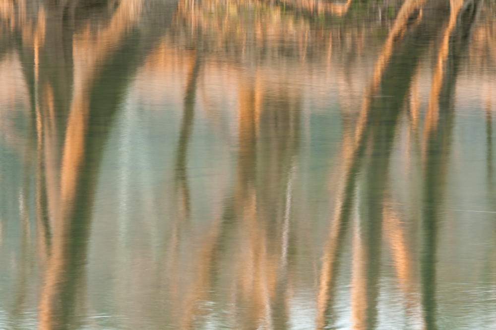 Reflection, North Fork of Holston River