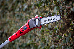 Long handled chainsaw