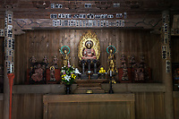 The centerpiece at Kaizoji is the wooden statue of Yakushi Nyorai or Bhaisajyaguru Vaiduryaprabha in Sanskrit is usually referred to as the Physician of Souls.  At Kaizoji he is sitting on the lotus flower pedestal with two attendant statues of Nikko Bosatsu to the right and Gakko Bosatsu on the left  The three form the Yakushi Trinity of Health or Medicine according to Buddhist doctrine.