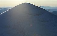 Mountain climbing, alpinism on the ridge crest of the Kebnekaise mountain, 2104 meters, Giebnegaise, Lappland, Lapland, Norrbotten, Sweden, Mountaineers Camilla Antonsson, Fidde Jönsson and Pontus Tengvall