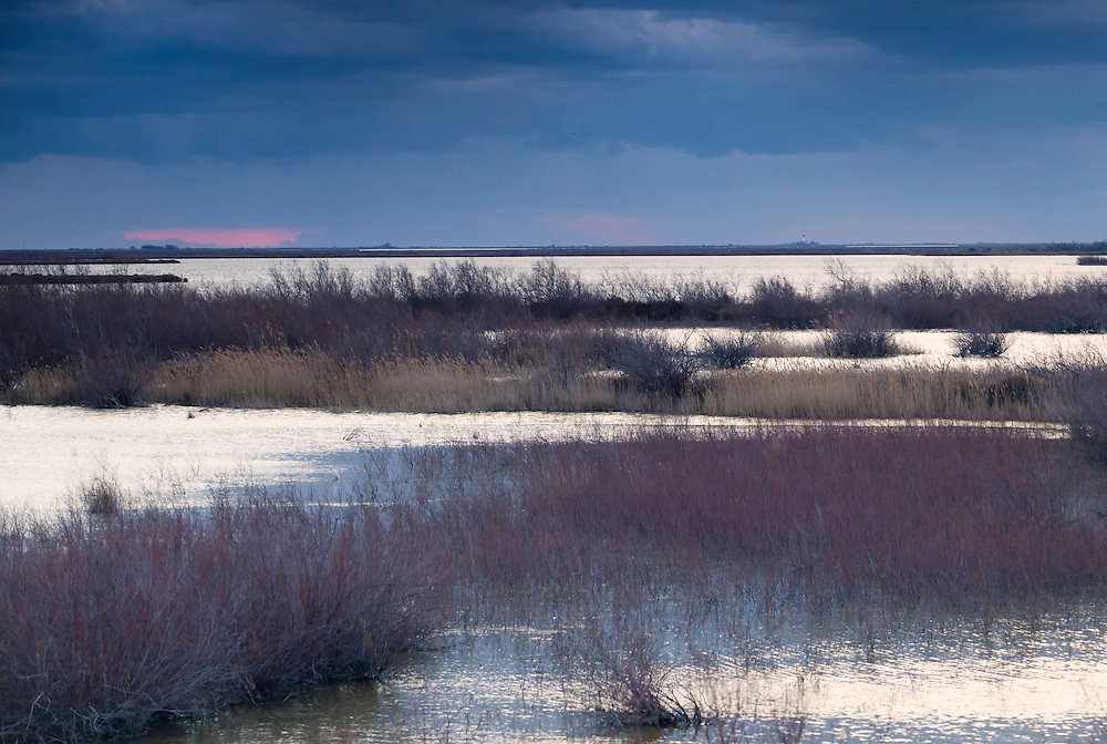 Sunset on a water scenery in the Camargue, France