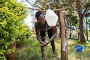 Mazo Juma demonstrating how to use a tippy tap in Endagikot school built by the Raleigh ICS volunteers. ICS Raleigh SWASH (school water, sanitation and hygiene plan) project. Mbulu, Manyara district, Tanzania. Working in partnership with the Diocese of Mbulu Development Department (DMDD); part of Caritas Tanzania.